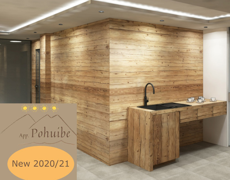 Ansicht-Sauna-Plan